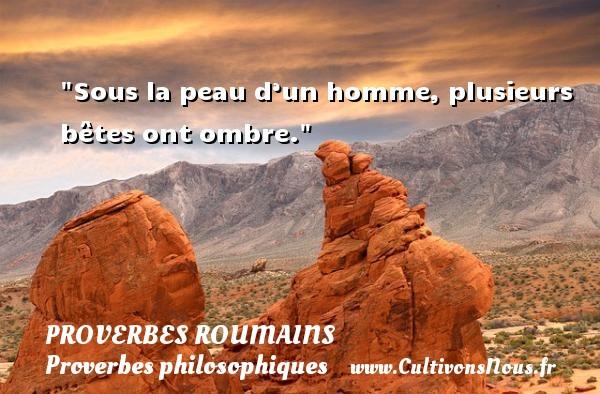 Sous la peau d'un homme, plusieurs bêtes ont ombre. Un Proverbe roumain PROVERBES ROUMAINS - Proverbes philosophiques