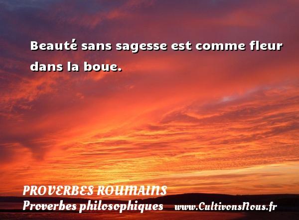 Proverbes roumains - Proverbes philosophiques - Beauté sans sagesse est comme fleur dans la boue. Un Proverbe roumain PROVERBES ROUMAINS