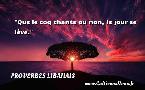 Proverbes libanais - Que le coq chante ou non, le jour se lève. Un proverbe libanais PROVERBES LIBANAIS