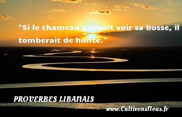 Si le chameau pouvait voir sa bosse, il tomberait de honte. Un proverbe libanais PROVERBES LIBANAIS - Proverbes libanais