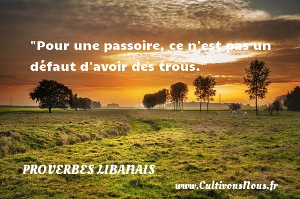 Proverbes libanais - Pour une passoire, ce n est pas un défaut d avoir des trous. Un proverbe libanais PROVERBES LIBANAIS
