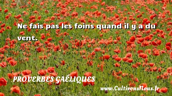 Proverbes gaéliques - Ne fais pas les foins quand il y a du vent. Un proverbe gaélique PROVERBES GAÉLIQUES