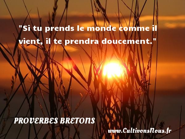 Proverbes bretons - Si tu prends le monde comme il vient, il te prendra doucement. Un proverbe breton PROVERBES BRETONS