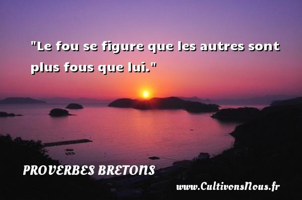 Proverbes bretons - Le fou se figure que les autres sont plus fous que lui. Un proverbe breton PROVERBES BRETONS