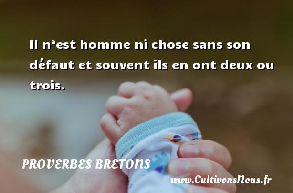 Proverbes bretons - Il n'est homme ni chose sans son défaut et souvent ils en ont deux ou trois. Un proverbe breton PROVERBES BRETONS