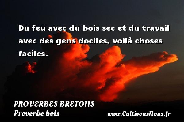 Proverbes bretons - Proverbe bois - Du feu avec du bois sec et du travail avec des gens dociles, voilà choses faciles. Un proverbe breton PROVERBES BRETONS