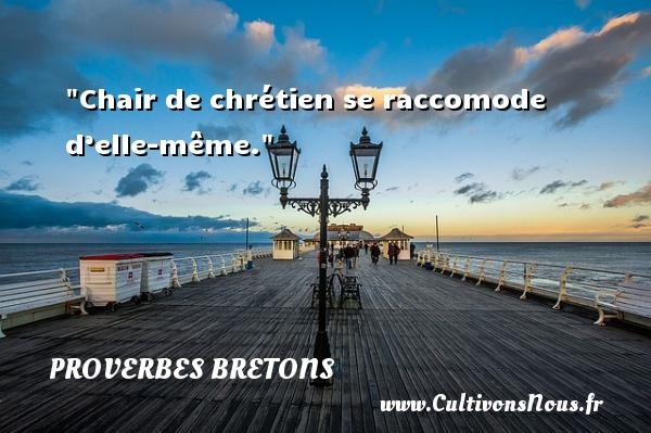Proverbes bretons - Chair de chrétien se raccomode d'elle-même. Un proverbe breton PROVERBES BRETONS