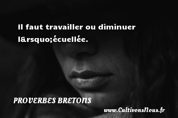 Proverbes bretons - Il faut travailler ou diminuer l'écuellée. Un proverbe breton PROVERBES BRETONS