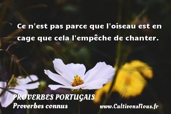 Proverbes portugais - Proverbes connus - Ce n est pas parce que l oiseau est en cage que cela l empêche de chanter. Un proverbe portugais PROVERBES PORTUGAIS