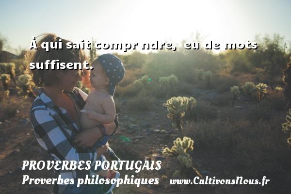 Proverbes portugais - Proverbes philosophiques - À qui sait comprеndre, рeu de mots suffisent. Un proverbe portugais PROVERBES PORTUGAIS