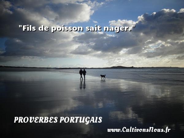 Fils de poisson sait nager. Un proverbe portugais PROVERBES PORTUGAIS - Proverbes philosophiques