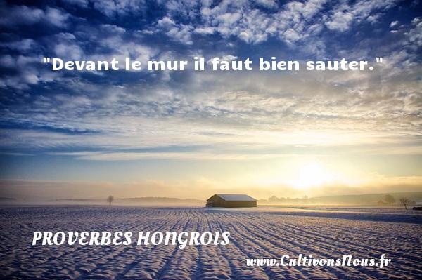 Devant le mur il faut bien sauter. Un proverbe hongrois PROVERBES HONGROIS - Proverbes philosophiques
