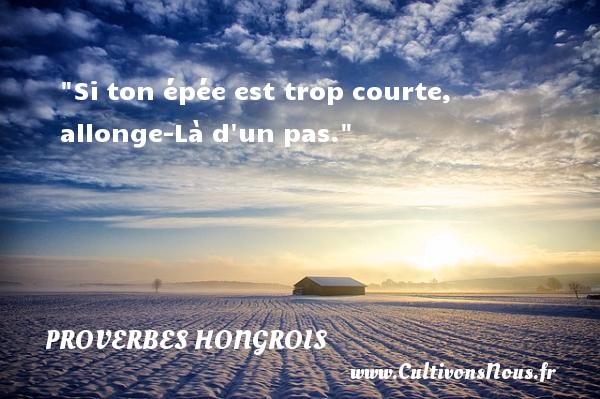 Si ton épée est trop courte, allonge-Là d un pas. Un proverbe hongrois PROVERBES HONGROIS