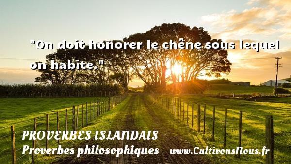 Proverbes islandais - Proverbes philosophiques - On doit honorer le chêne sous lequel on habite. Un proverbe islandais PROVERBES ISLANDAIS