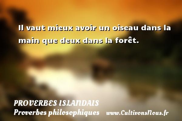 Proverbes islandais - Proverbes philosophiques - Il vaut mieux avoir un oiseau dans la main que deux dans la forêt. Un proverbe islandais PROVERBES ISLANDAIS