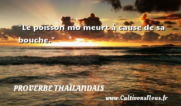 Le poisson mo meurt à cause de sa bouche.  Un proverbe thaïlandais PROVERBES THAÏLANDAIS - Proverbes thaïlandais