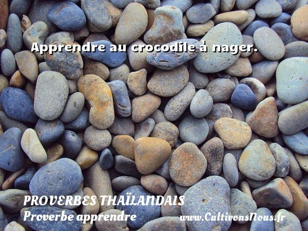 Proverbes thaïlandais - Proverbe apprendre - Apprendre au crocodile à nager. Un proverbe thaïlandais PROVERBES THAÏLANDAIS