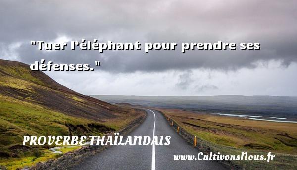 Proverbes thaïlandais - Tuer l'éléphant pour prendre ses défenses. Un proverbe thaïlandais PROVERBES THAÏLANDAIS