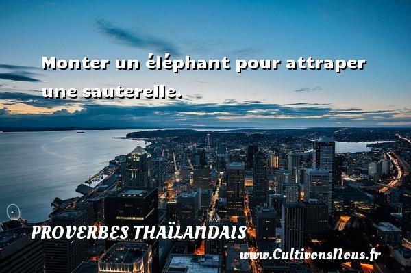 Proverbes thaïlandais - Monter un éléphant pour attraper une sauterelle. Un proverbe thaïlandais PROVERBES THAÏLANDAIS