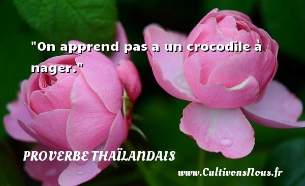 Proverbes thaïlandais - On apprend pas a un crocodile à nager. Un proverbe thaïlandais PROVERBES THAÏLANDAIS