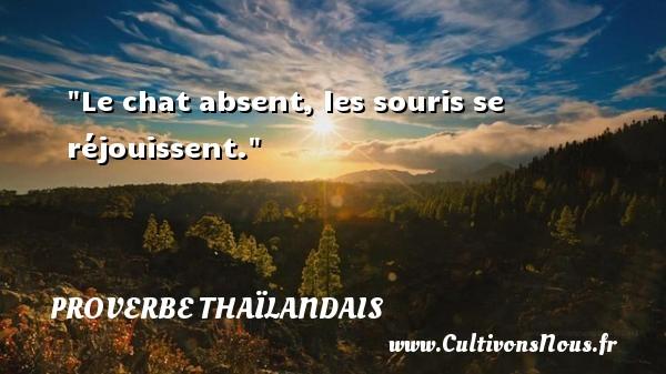 Le chat absent, les souris se réjouissent. Un proverbe thaïlandais PROVERBES THAÏLANDAIS - Proverbes thaïlandais