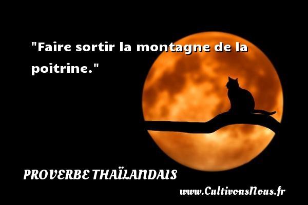 Faire sortir la montagne de la poitrine.  Un proverbe thaïlandais PROVERBES THAÏLANDAIS - Proverbes thaïlandais