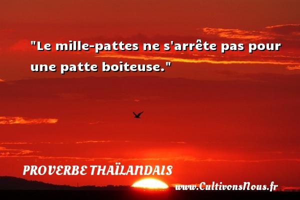 Le mille-pattes ne s arrête pas pour une patte boiteuse.  Un proverbe thaïlandais PROVERBES THAÏLANDAIS - Proverbes thaïlandais