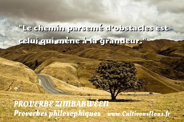 Le chemin parsemé d'obstacles est celui qui mène à la grandeur. Un proverbe zimbabwéen PROVERBES ZIMBABWÉENS - Proverbes zimbabwéens - Proverbes philosophiques