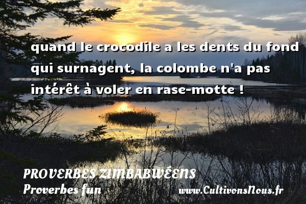 quand le crocodile a les dents du fond qui surnagent, la colombe n a pas intérêt à voler en rase-motte ! Un proverbe zimbabwéen PROVERBES ZIMBABWÉENS - Proverbes zimbabwéens - Proverbes fun