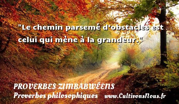 Proverbes zimbabwéens - Proverbes philosophiques - Le chemin parsemé d'obstacles est celui qui mène à la grandeur. Un proverbe zimbabwéen PROVERBES ZIMBABWÉENS