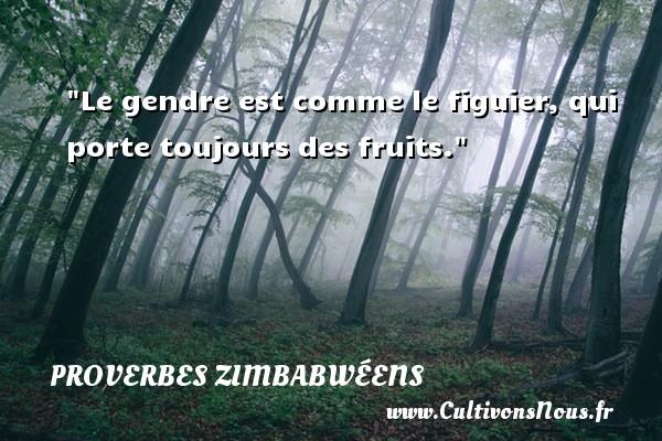 Le gendre est comme le figuier, qui porte toujours des fruits. Un proverbe zimbabwéen PROVERBES ZIMBABWÉENS - Proverbes zimbabwéens