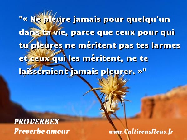 « Ne pleure jamais pour quelqu un dans ta vie, parce que ceux pour qui tu pleures ne méritent pas tes larmes et ceux qui les méritent, ne te laisseraient jamais pleurer. » PROVERBES - Proverbe amour