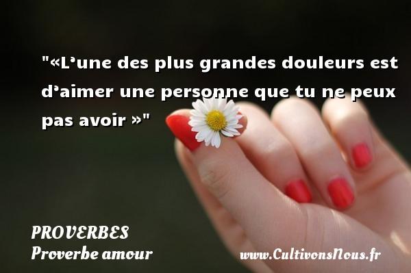 Proverbes - Proverbe amour - «L'une des plus grandes douleurs est d'aimer une personne que tu ne peux pas avoir » PROVERBES