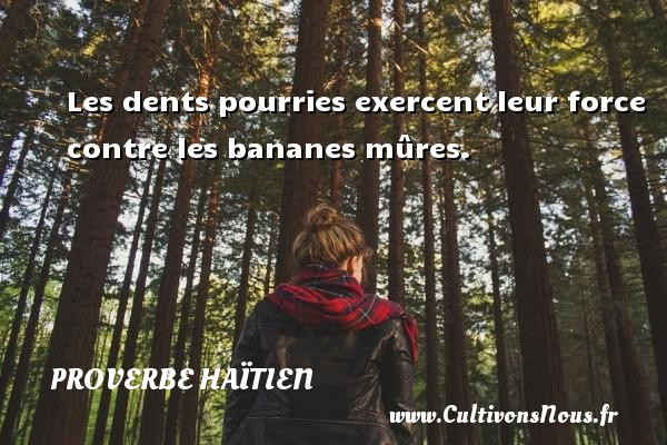 Proverbe haïtien - Les dents pourries exercent leur force contre les bananes mûres. Un proverbe haïtien PROVERBE HAÏTIEN