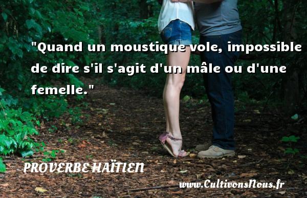 Quand un moustique vole, impossible de dire s il s agit d un mâle ou d une femelle. Un proverbe haïtien PROVERBE HAÏTIEN
