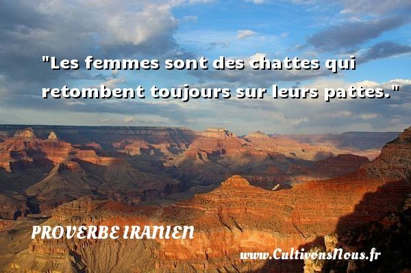 Les femmes sont des chattes qui retombent toujours sur leurs pattes. Un proverbe iranien PROVERBE IRANIEN - Proverbe iranien