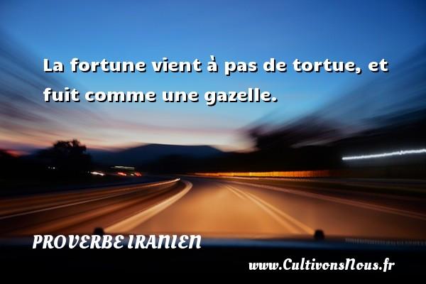 Proverbe iranien - La fortune vient à pas de tortue, et fuit comme une gazelle. Un proverbe iranien PROVERBE IRANIEN