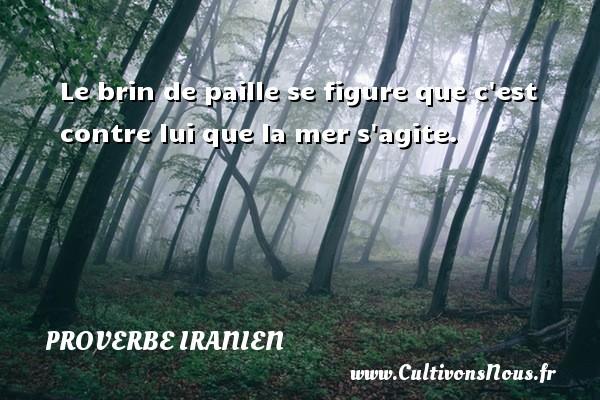 Proverbe iranien - Le brin de paille se figure que c est contre lui que la mer s agite. Un proverbe iranien PROVERBE IRANIEN