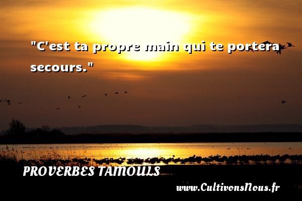 Proverbes tamouls - C est ta propre main qui te portera secours.  Un proverbe tamoul PROVERBES TAMOULS