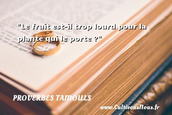 Le fruit est-il trop lourd pour la plante qui le porte ?  Un proverbe tamoul PROVERBES TAMOULS