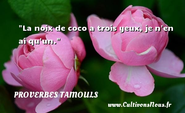 La noix de coco a trois yeux, je n en ai qu un.  Un proverbe tamoul PROVERBES TAMOULS