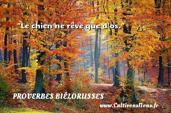 Proverbes biélorusses - Le chien ne rêve que d os. Un proverbe biélorusse PROVERBES BIÉLORUSSES