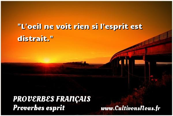 L oeil ne voit rien si l esprit est distrait.   Un proverbe français PROVERBES FRANÇAIS - Proverbes français - Proverbes esprit