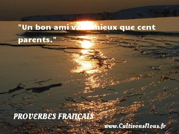 Un bon ami vaut mieux que cent parents.   Un proverbe français PROVERBES FRANÇAIS - Proverbes français - Proverbes Amitié