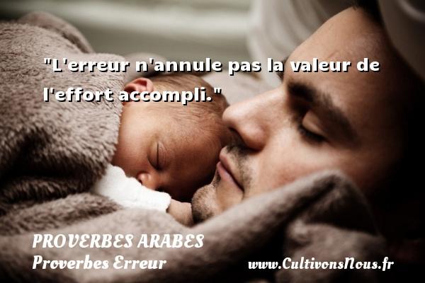 L erreur n annule pas la valeur de l effort accompli.   Un proverbe arabe PROVERBES ARABES - Proverbes Erreur