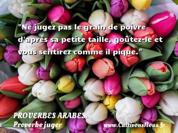 Proverbes arabes - Proverbe juger - Ne jugez pas le grain de poivre d après sa petite taille, goûtez-le et vous sentirez comme il pique.   Un proverbe arabe PROVERBES ARABES