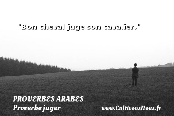 Proverbes arabes - Proverbe juger - Bon cheval juge son cavalier.   Un proverbe arabe PROVERBES ARABES