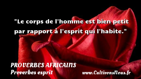 Proverbes africains - Proverbes esprit - Le corps de l homme est bien petit par rapport à l esprit qui l habite.   Un proverbe africain PROVERBES AFRICAINS