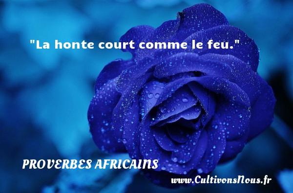 La honte court comme le feu. Un proverbe africain PROVERBES AFRICAINS