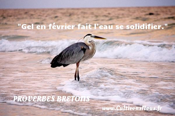 Proverbes bretons - Gel en février fait l eau se solidifier.  Un proverbe breton PROVERBES BRETONS